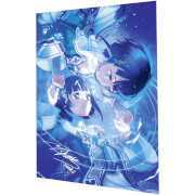 Foto van Sword Art Online: Hollow Realization Limited Signed Lithography Print
